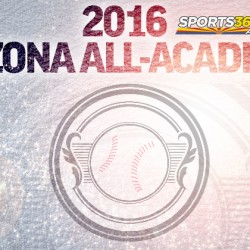 2016 All-Academic Baseball featured image