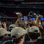 Williams Field of Dreams: Black Hawks Take 5A Title
